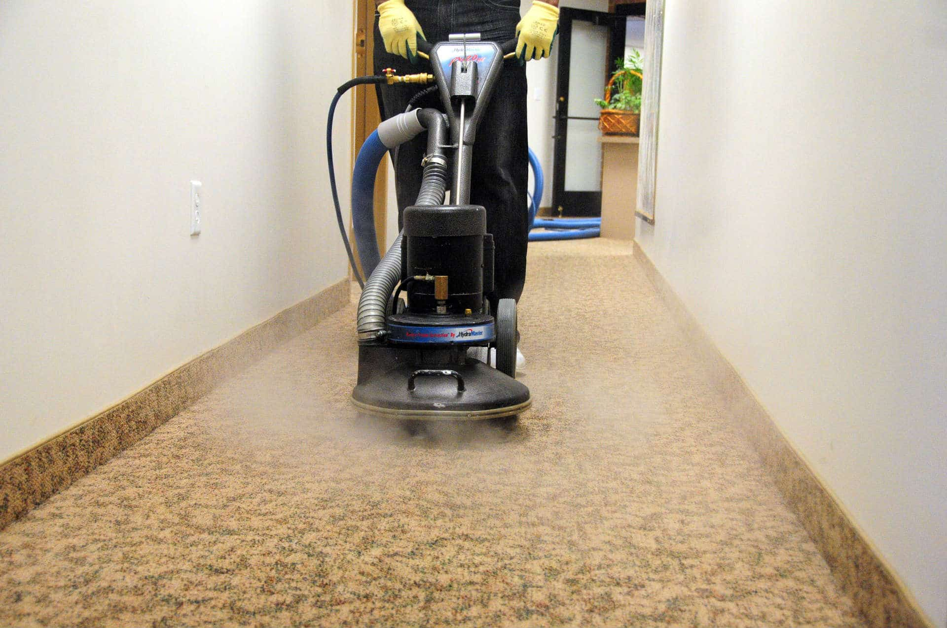 Professional Carpet Cleaning Services Dallas Tx Ultra