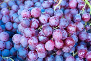 ripe grapes at a street market, lets make grape juice