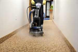 Pet stains, rotovac cleaning