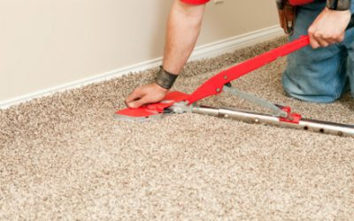 Carpet Repair Plano, Did your dog scratch a hole in your carpet?