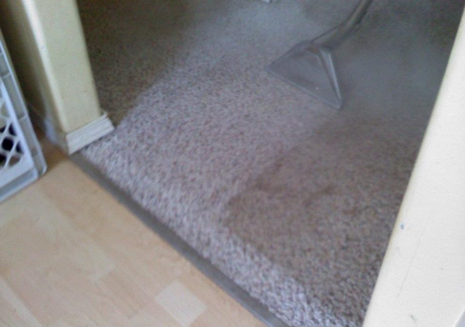 Carpet Cleaning In Little Elm, Is It That Time Again?