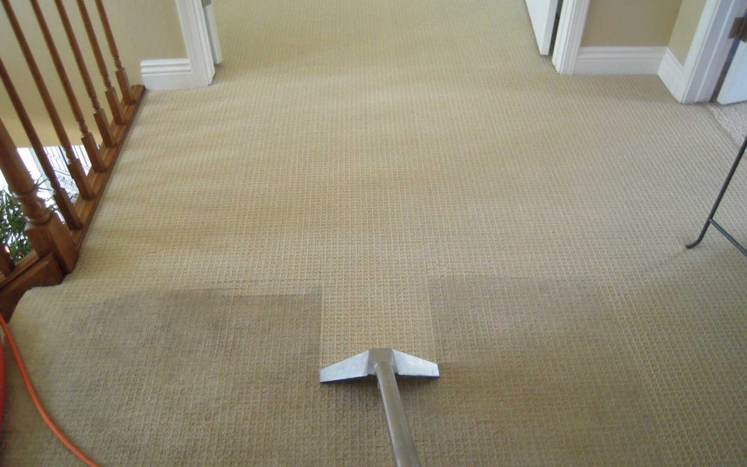 Carpet Cleaning Frisco Texas, Planning for a big event?